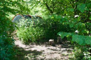 2.5m x 5m Small woodland pitch No. 4