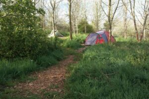 A frame & two tent pitches - No 11